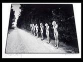 Eikoh Hosoe: Sunflower Children, Signed Silver Gelatin Print