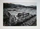 Eikoh Hosoe: Kamaitachi #27,  Signed and Framed Silver Gelatin Print