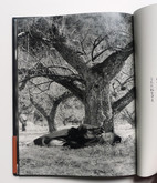 The Whereabouts of Original Sin by Eikoh Hosoe, Signed First Edition