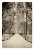 Jefferson Hayman: The New City, 36 Signed Platinum Prints, 4 of 17