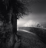 Michael Kenna: Mont-Saint-Michel,15 Signed Platinum Prints, 17 of 60