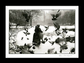 Bruce Davidson: Woman at the Pond, Central Park, Signed Platinum Print