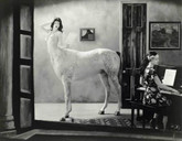 Joel-Peter Witkin: The Journal of Joel-Peter Witkin, 15 Signed Platinum Prints