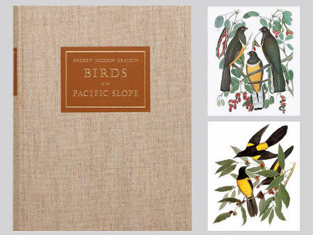 Birds of the Pacific Slope, Portfolio & Companion Volume, Arion Press, 143 of 400