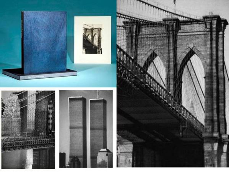 Sheila Metzner: The Bridge, 13 Signed Platinum Prints, Limited Edition, 4 of 68