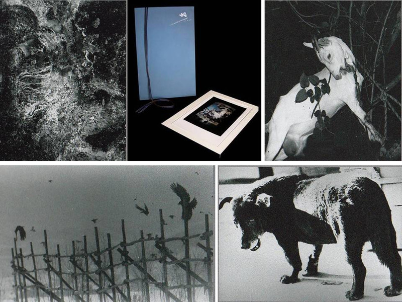Modern Masters of Photography Japan, Portfolio of 12 Signed Prints, 47 of 100