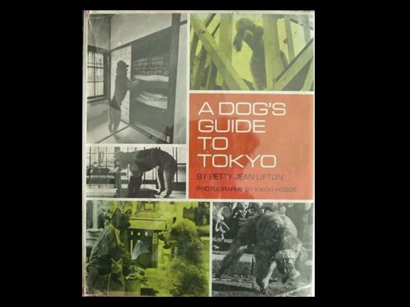 Eikoh Hosoe and BJ Lifton, A Dog's Guide to Tokyo, First Edition