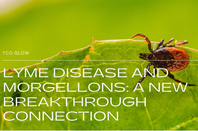 Lyme Disease and Morgellons: A New Breakthrough Connection