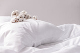4 Reasons To Switch To Organic Bedding