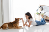 5 Reasons To Give Your Pet Natural Treats