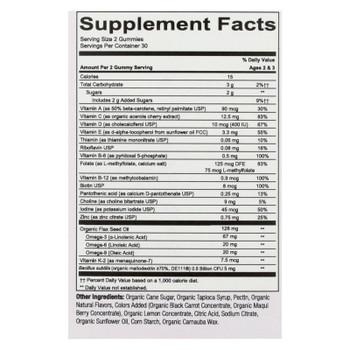 Smartypants - Gummy Vitamin Tdlr Complt - 1 Each - 60 Ct