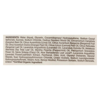 Jason Natural Products - Body Wash Himlyn Salt - 1 Each - 30 Fz