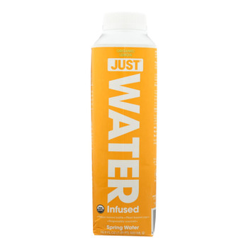 Just Water - Water Lemon - Case Of 12 - 16.9 Fz