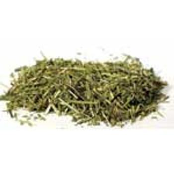 1 Lb Scullcap Cut (scutelateriflora Lateriflora)