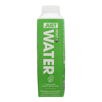 Just Water - Water Mint Infused - Case Of 12 - 16.9 Fz
