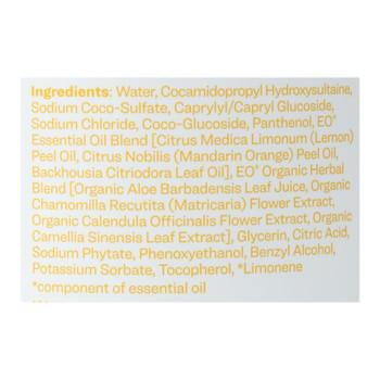 Everyone - Hand Soap Meyer Lemon Refill - 1 Each 1-32 Fz