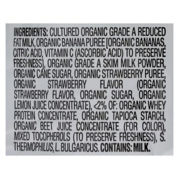 Happyyogis Yogurt Snacks - Organic - Freeze-dried - Greek - Babies And Toddlers - Strawberry Banana - 1 Oz - Case Of 8