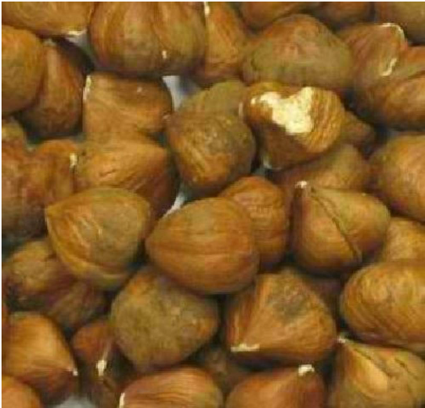 Bulk Nuts - Organic Shelled Filberts - Case Of 25 - 1 Lb.
