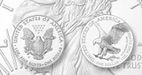 Updated News Regarding The New 2021 American Silver Eagle Reverse Design