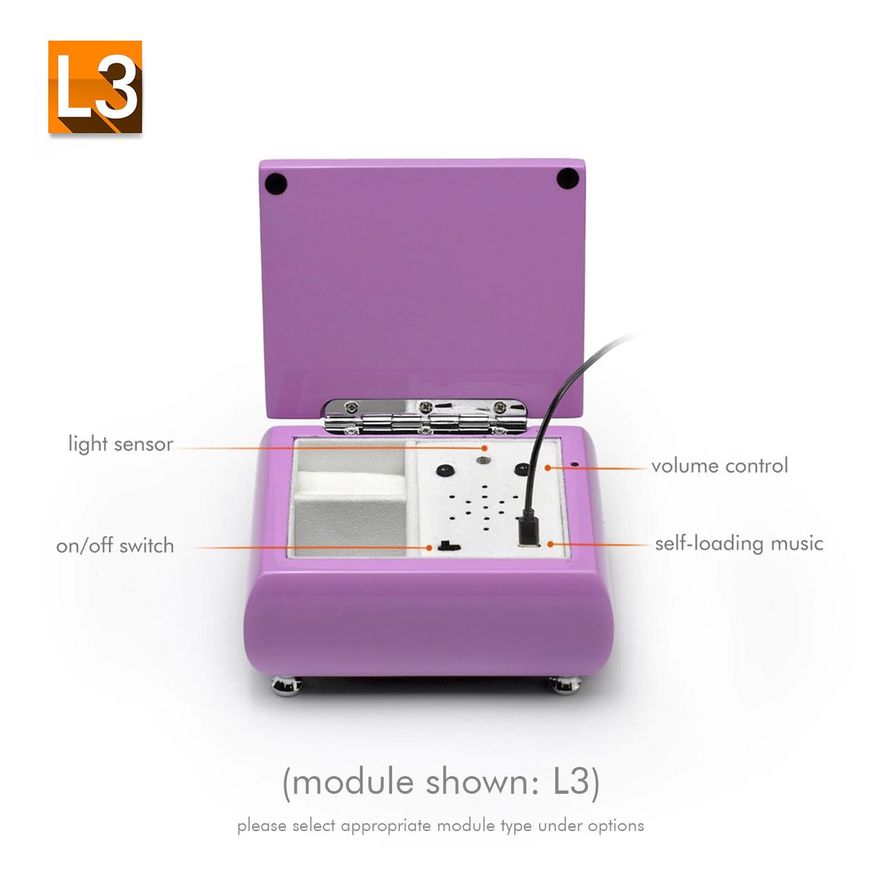 Adorable High Gloss Pink USB Sound Module Music Jewelry Box