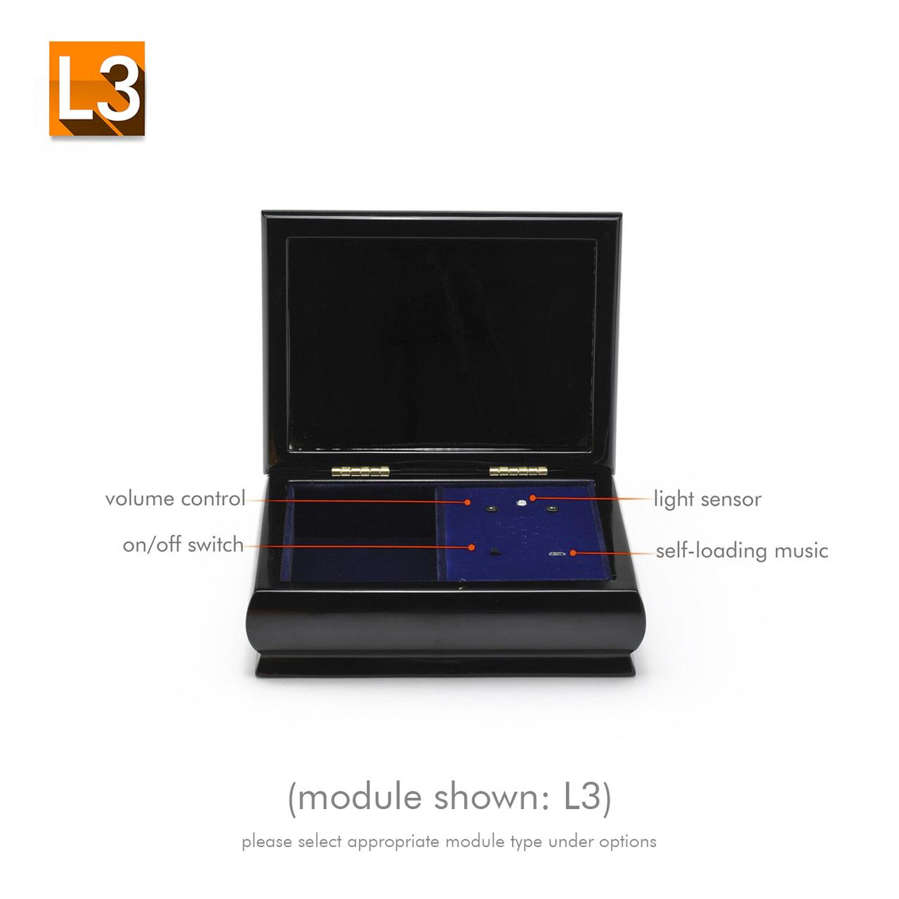 4 x 6 Black Lacquer Custom USB Module Photo Frame Music Box