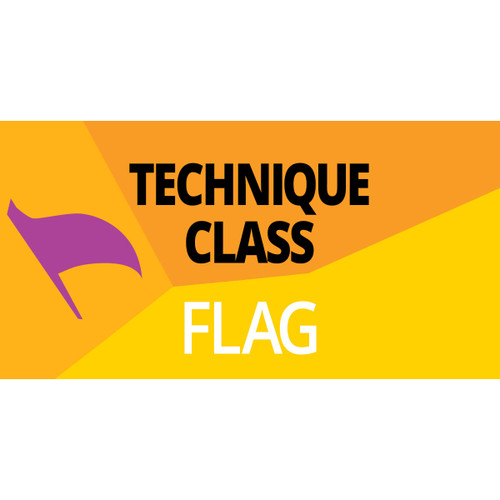 WGI Color Guard Series: Technique Class - Flag