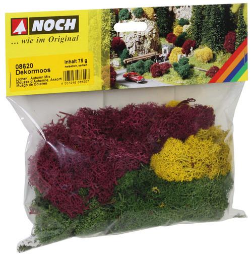 Lichen Autumn Mix
