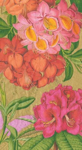 Jefferson's Garden Study Gold Guest Towel 4.5 x 8 Inch Pk 30