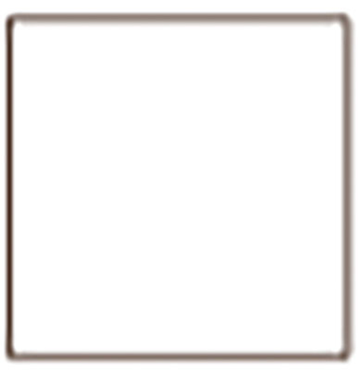 709-5 True Color Paint Railroad Color Acrylic Paints - 1oz 29.6mL -- White 1oz  (Scale=ALL)  Part#709-5