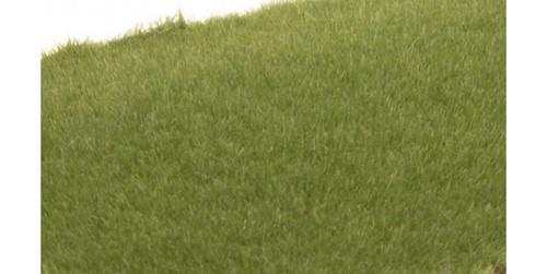 "Woodland Scenics 614 Static Grass - Field System -- Medium Green 1/16""  2mm Fibers A Scale"