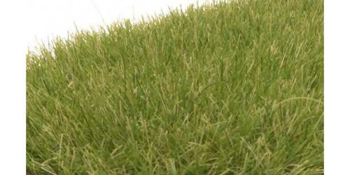 "Woodland Scenics 622 Static Grass - Field System -- Medium Green 1/4""  7mm Fibers A Scale"