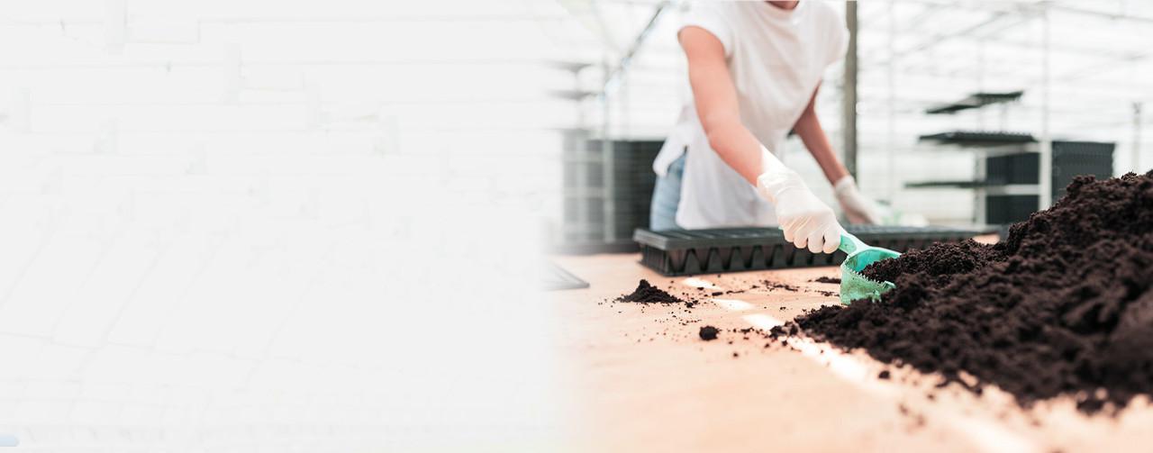 Clay Pebbles & Grow Stones