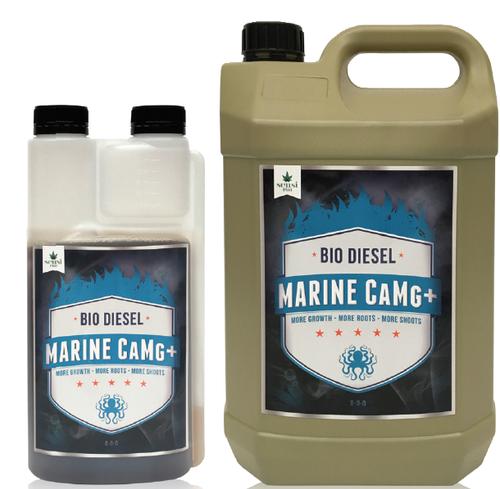 Biodiesel MARINE CAMG+