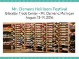 Stamp-n-Storage will be in Michigan!