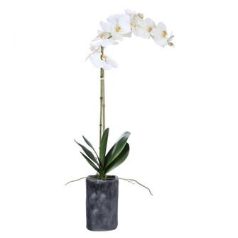Uttermost Eponine White Orchid (85 60175)