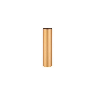 NEPTUNE,12IN EXTENSN TUBE,GOL (4304 37186-029)