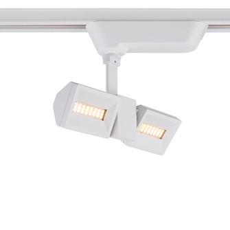 TRACKHEAD,LED,2LT,10W,WHITE (4304|29672-011)