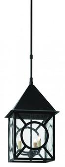 Ripley Large Outdoor Lantern (92|9500-0008)
