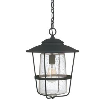 1 Light Outdoor Hanging Lantern (42 9604BK)