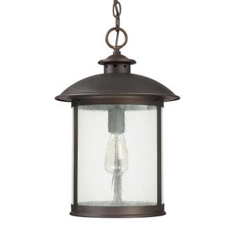 1 Light Outdoor Hanging Lantern (42 9564OB)