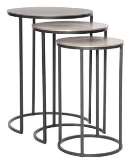 Uttermost Erik Metal Nesting Tables, S/3 (85 25057)