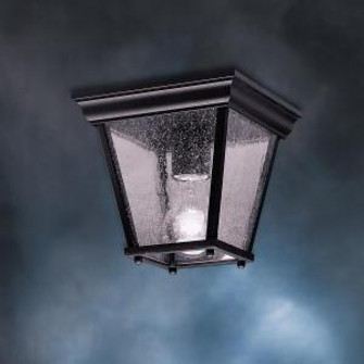Outdoor Ceiling 1Lt (10684 9859BK)