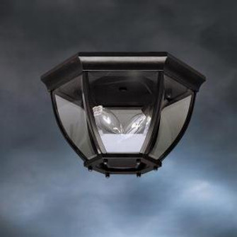 Outdoor Ceiling 2Lt (10684 9886BK)