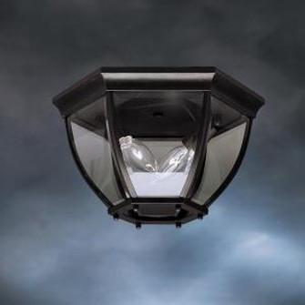 Outdoor Ceiling 2Lt (10684|9886BK)