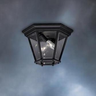 Outdoor Ceiling 2Lt (10684 9850BK)