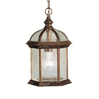 Outdoor Pendant 1Lt LED (10684 9835TZL18)