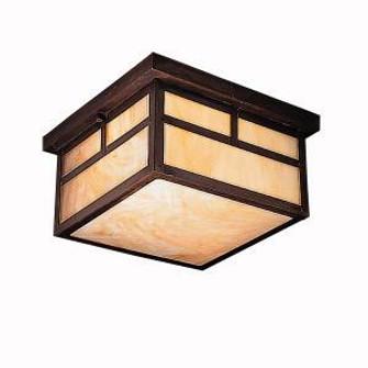 Outdoor Ceiling 2Lt (10684 9825CV)