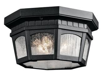 Outdoor Ceiling 3Lt (10684 9538BKT)