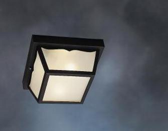Outdoor Ceiling 2Lt (10684 9322BK)