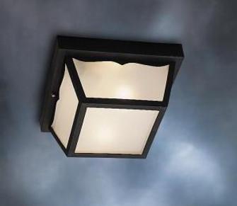 Outdoor Ceiling 1Lt (10684|9320BK)